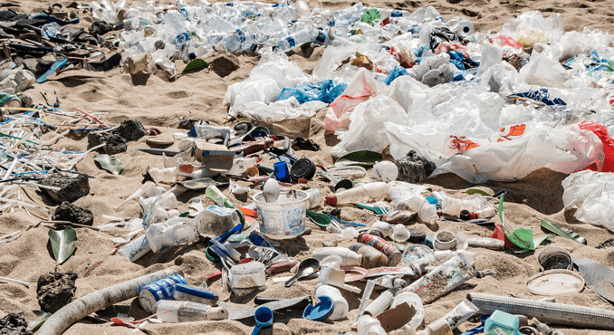 Plastic and pollution: How much do you know? | | Citizen Matters