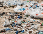 Plastic and pollution: How much do you know?