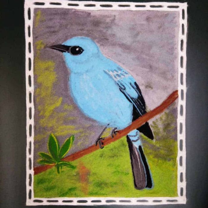 Ashtami: Sky Blue: Verditer Flycatcher