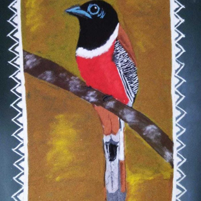 Sapthami:Red: Malabar Trogon