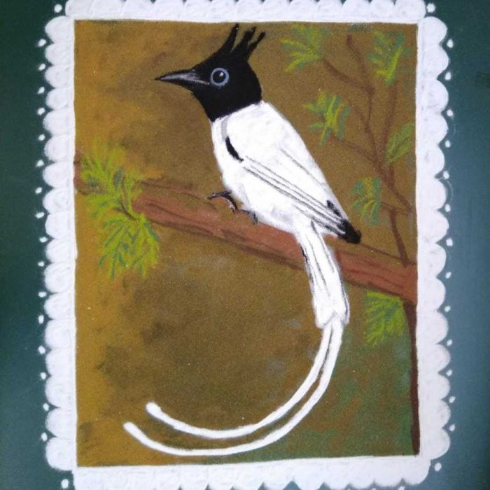 Sashti: White: Indian Paradise Flycatcher